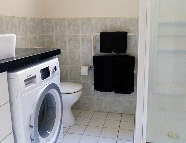 Penthouse Apartment Ground Bath Shower Washer